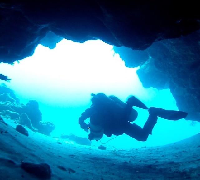 UTD DiveMaster