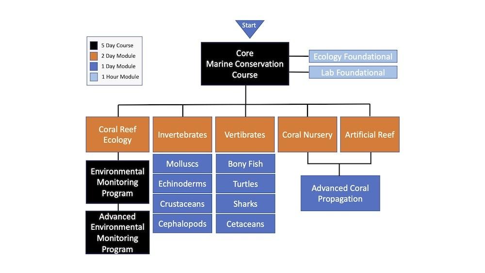 Marine Conservation Curriculum